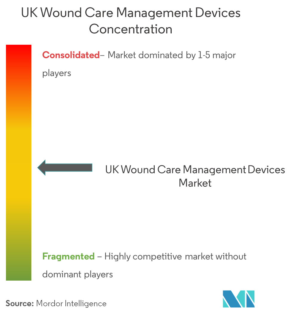 UK Wound Care Management Devices pic 3