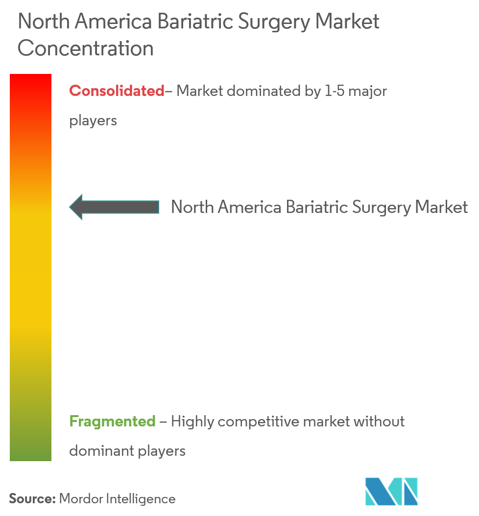 North America Bariatric Surgery Market