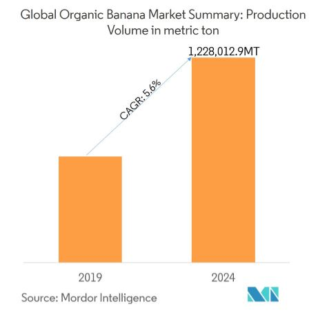 Organic Bananas Market | Growth, Trends, and Forecast (2019-2024)