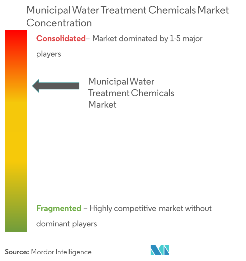 Performance Additives Market - Market Concentration