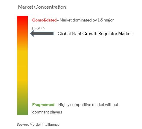 wheat market growth and trends