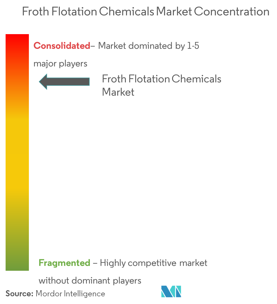 Froth Flotation Chemicals Market - Market Concentration