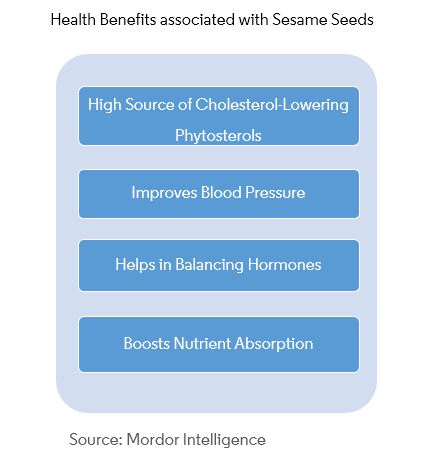 Sesame Seed Market | Growth, Trends, and Forecast (2019-2024)