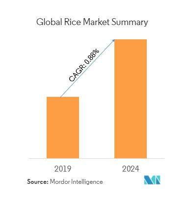 Rice Market Size, trends, Analysis, Growth | Forecast (2019-2024)
