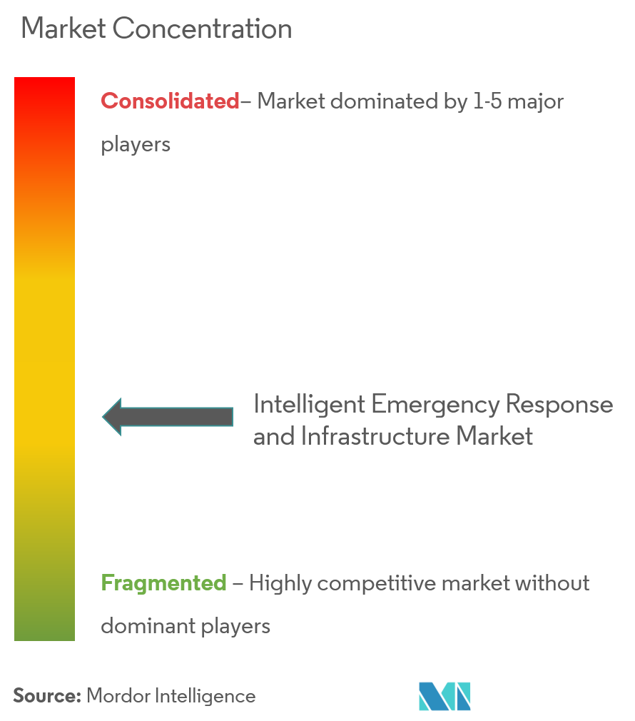Market Concentration_Intelligent Emergency Response Systems and infrastructure