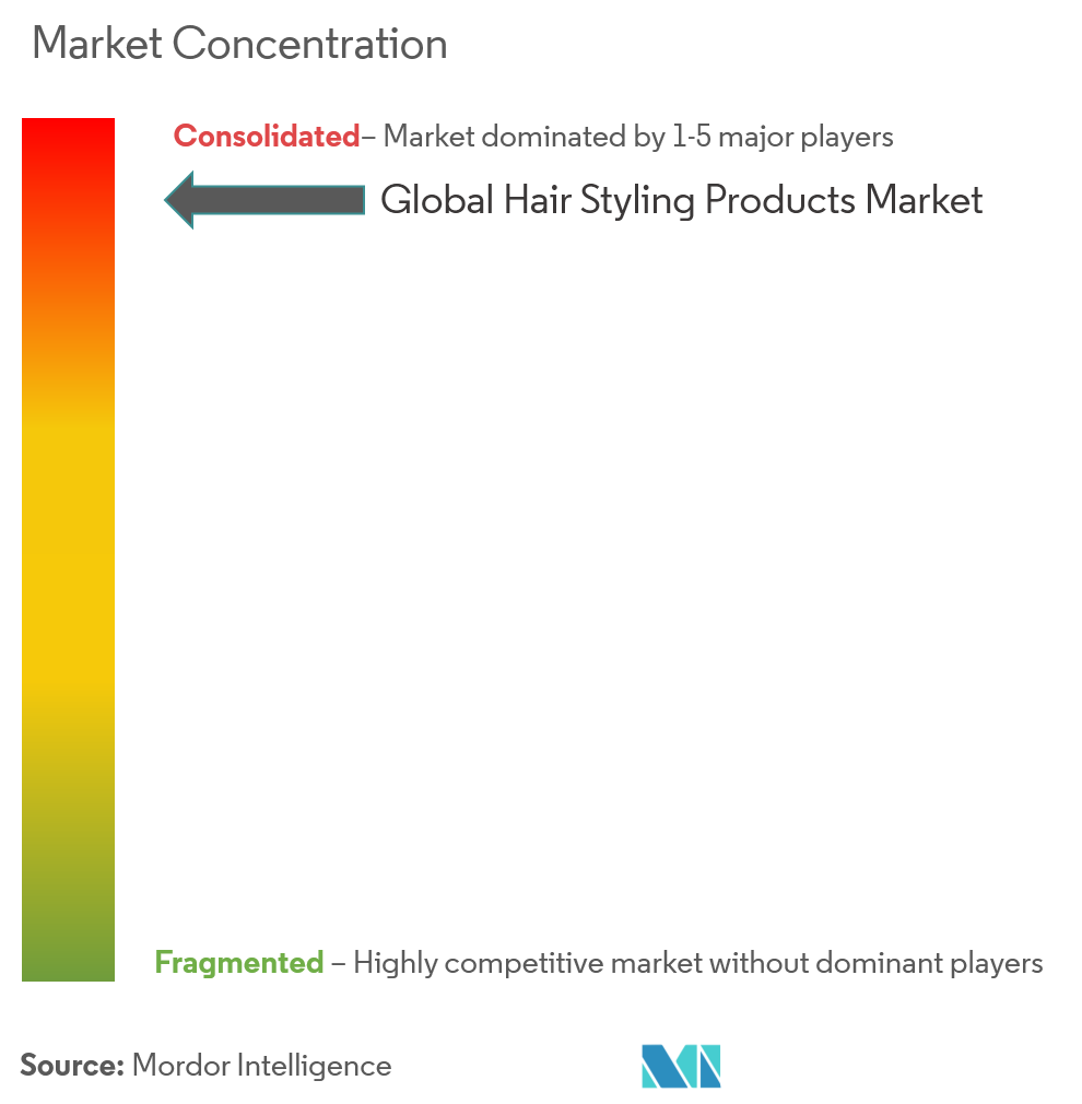 hair styling products market