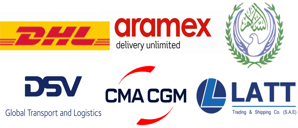 EGYPT FREIGHT & LOGISTICS MARKET   GROWTH, TRENDS, AND