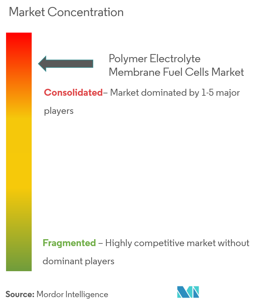 Polymer Electrolyte Membrane Fuel Cells Market | Growth