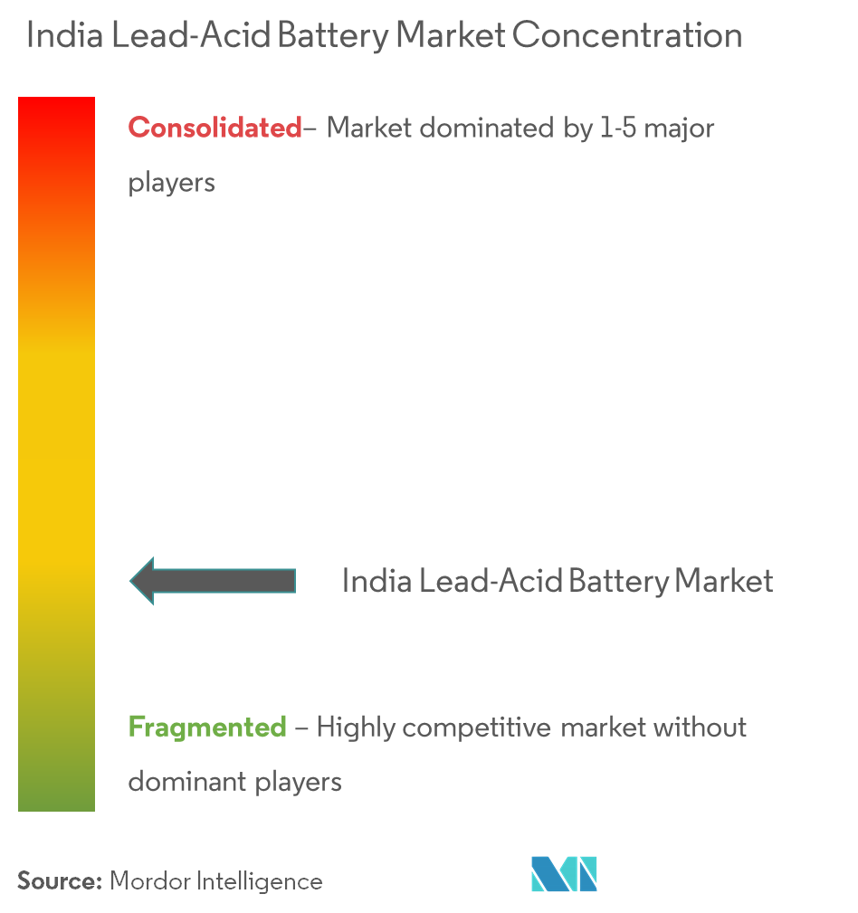 India Lead-Acid Battery Market - Market Concentration