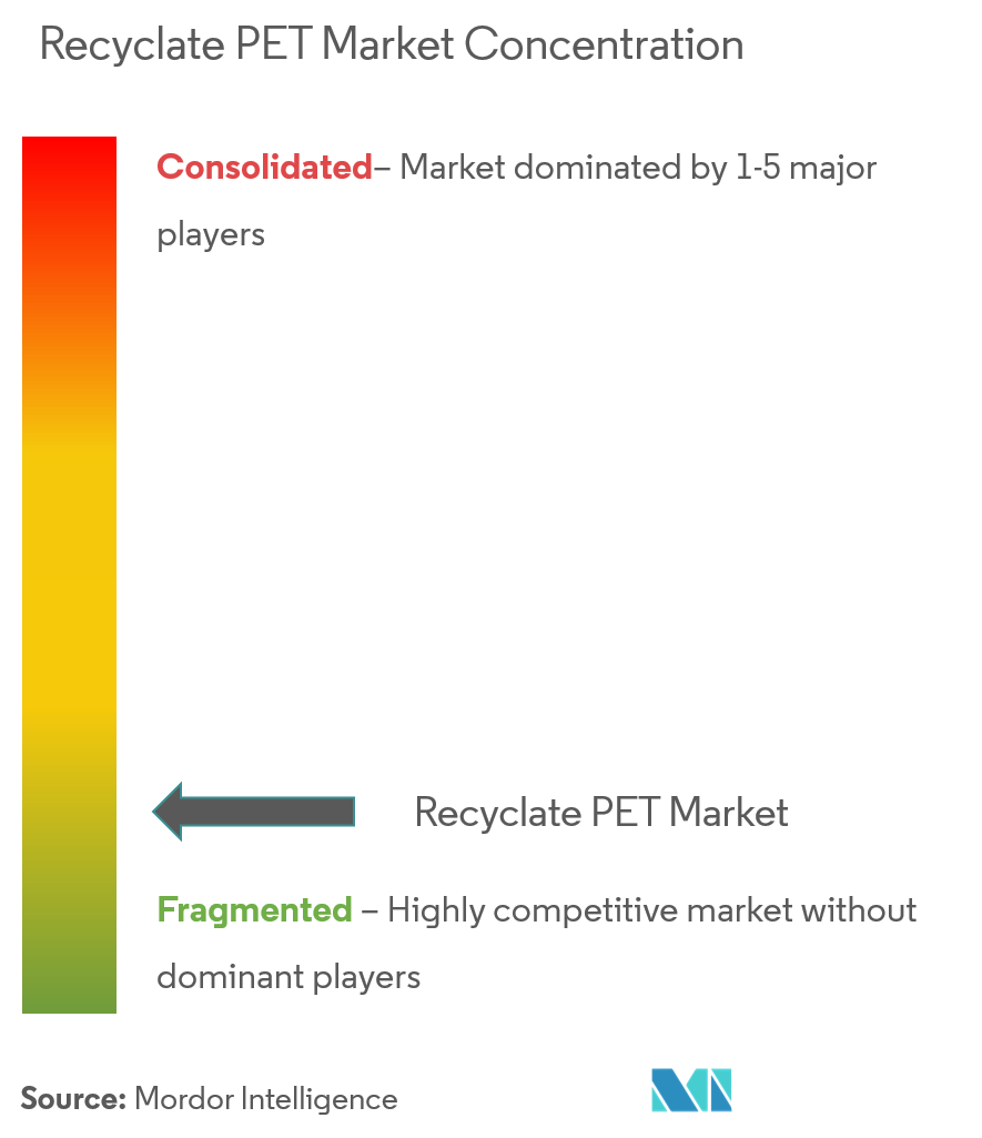 Recyclate PET Market - Market Concentration