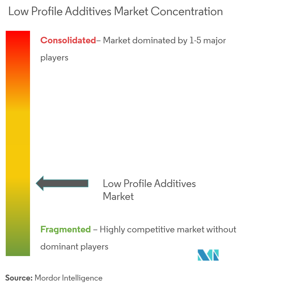 Low Profile Additives Market - Market Concentration