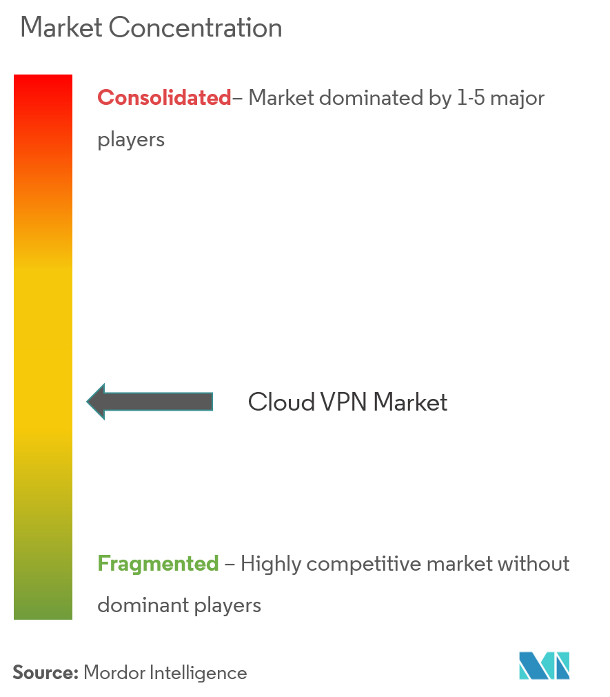 Market Concentration_Cloud VPN Market