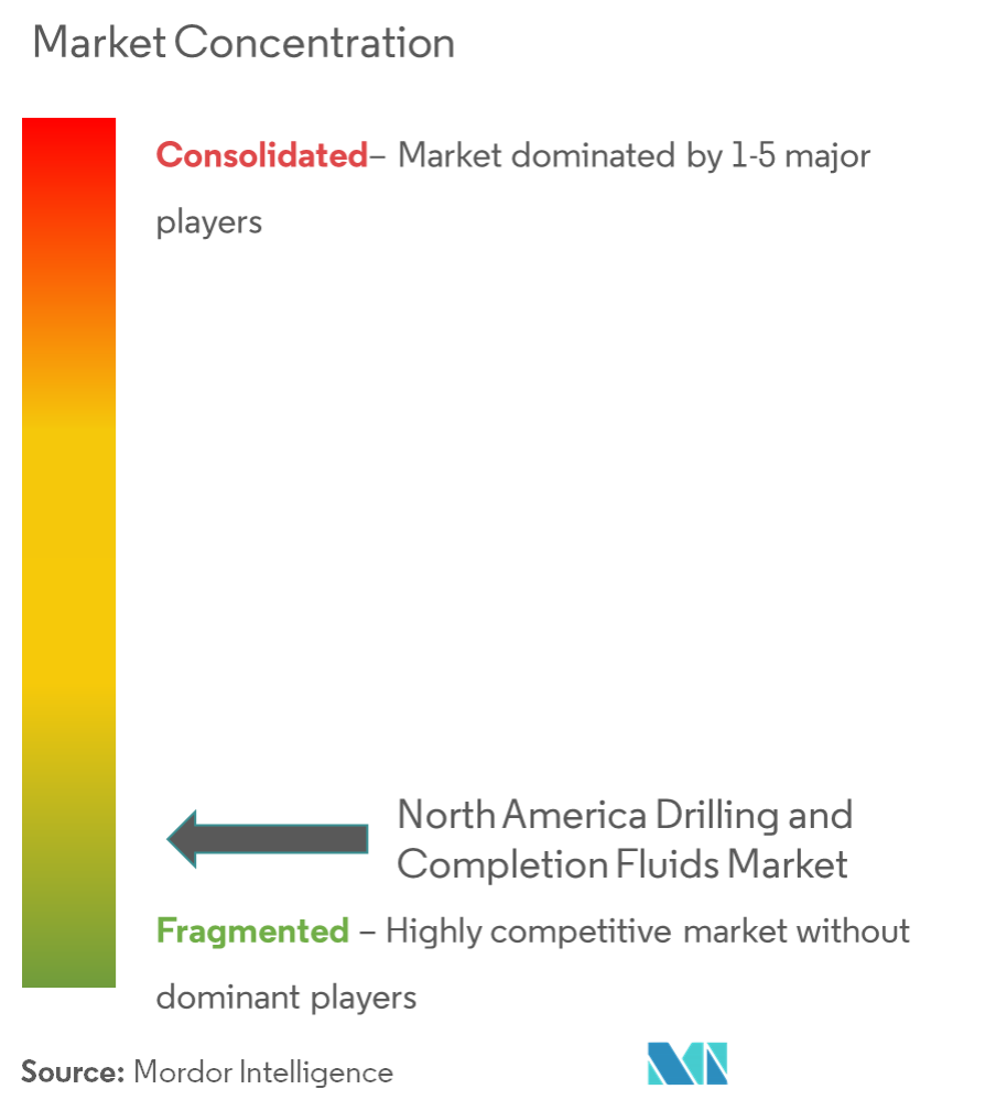 North America Drilling and Completion Fluids Market - Market Concentration