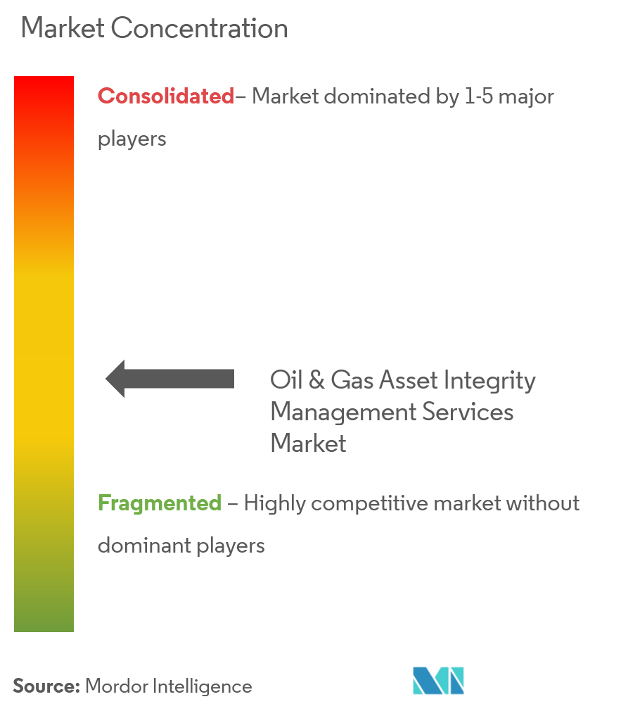 Oil & Gas Asset Integrity Management Services Market Concentration
