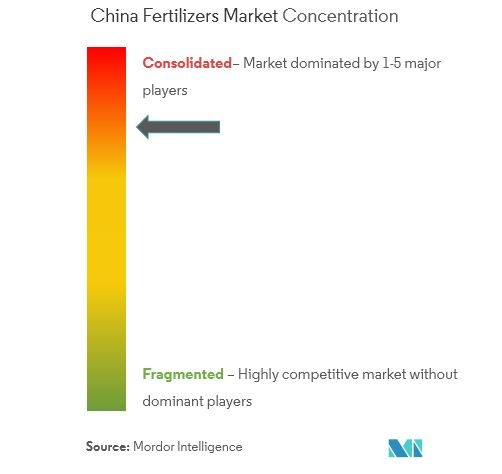 China fertilizers market_market concentration