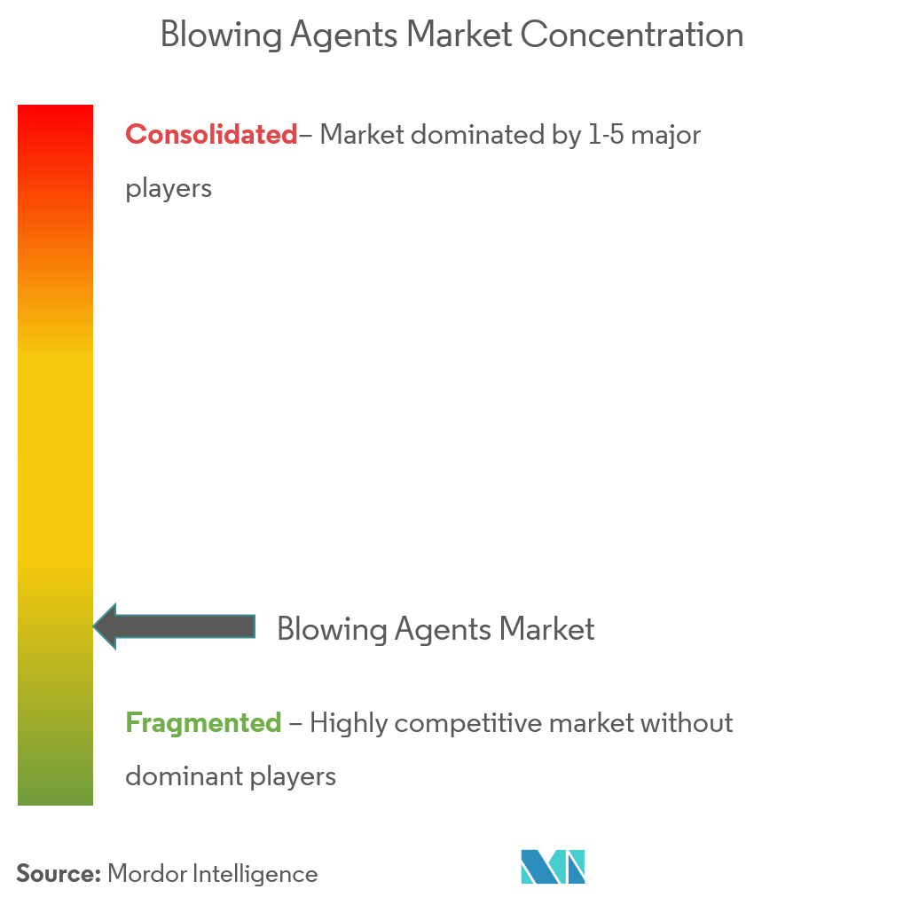 Blowing Agent Market- Market Concentration
