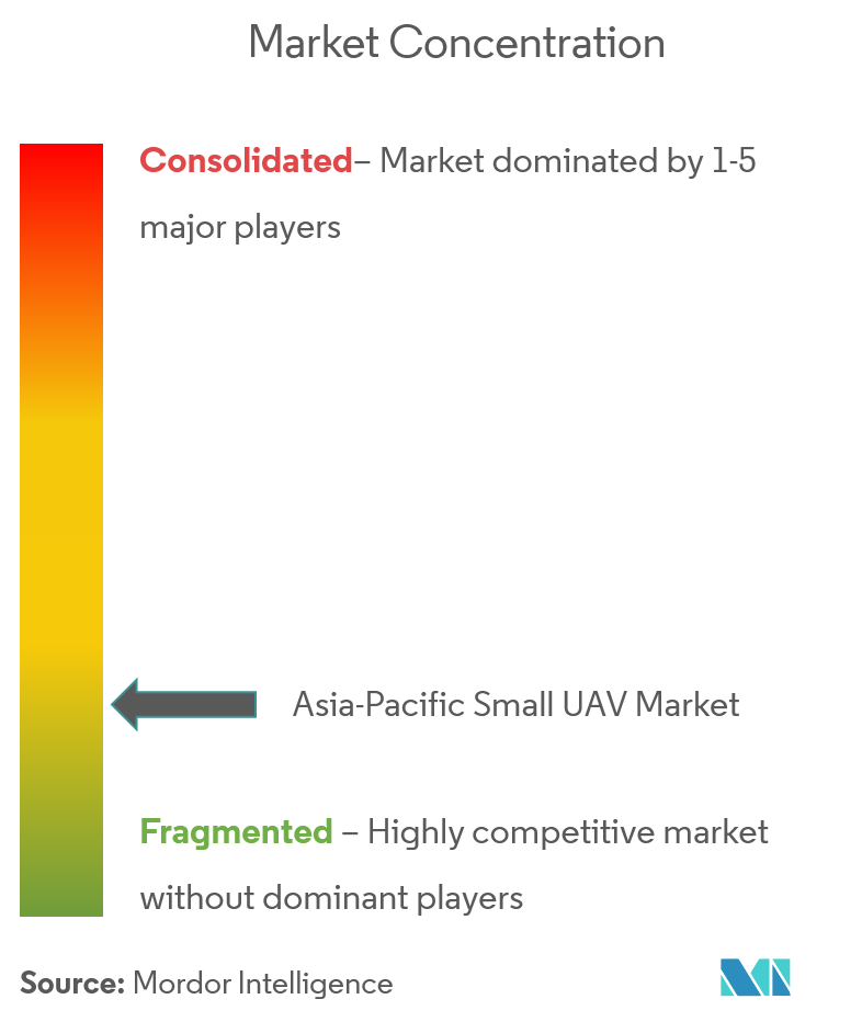 Asia-Pacific Small UAV Market Concentration