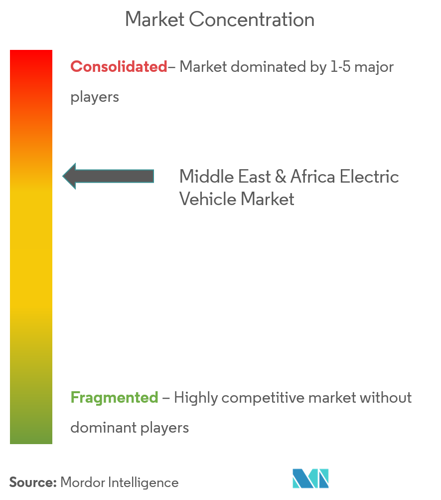Middle East & Africa Electric Vehicle Market Analysis